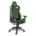 alpha_gamer_polaris_racing_black_green
